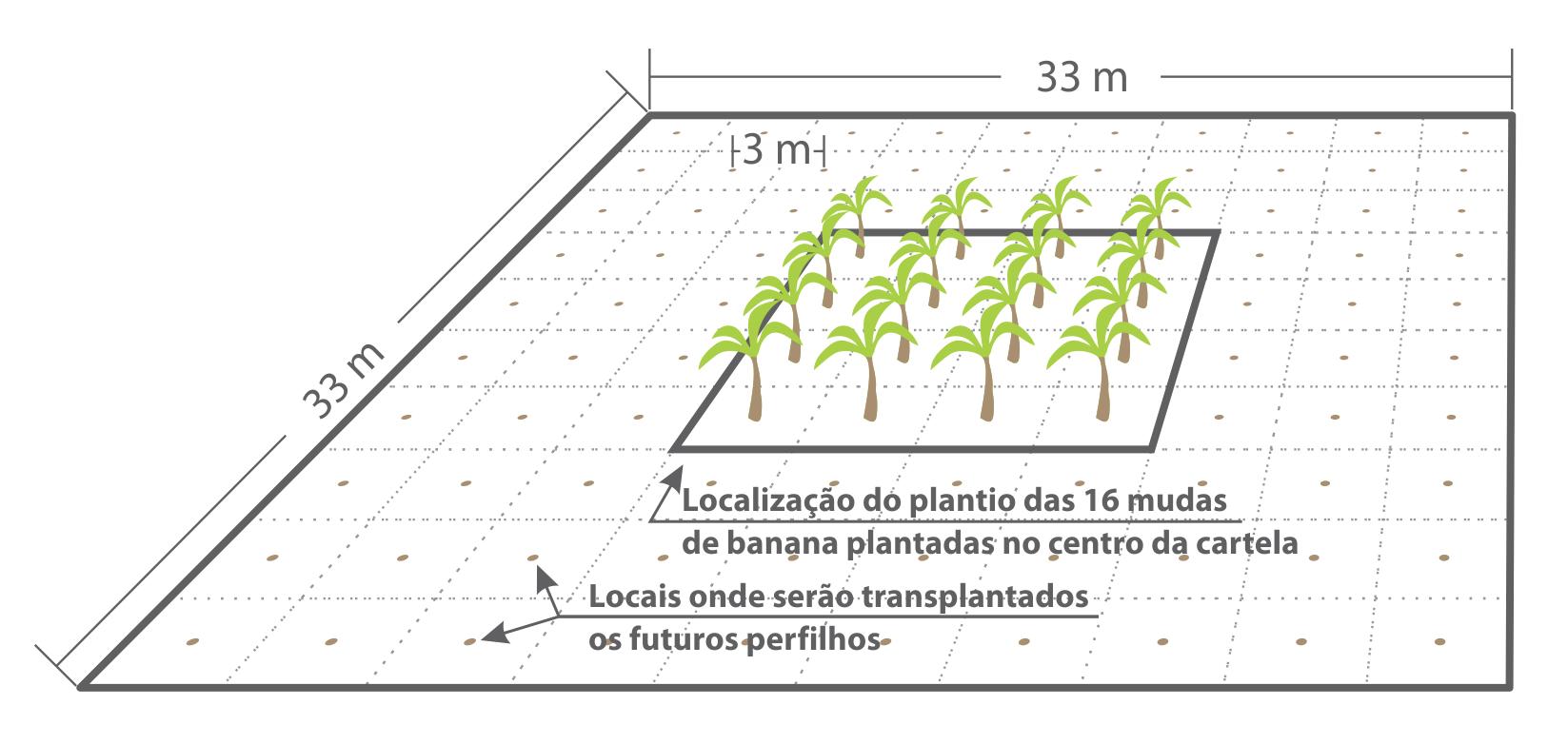 Fig.2_Croqui_Cartela_bingo_banana_perspectiva.png